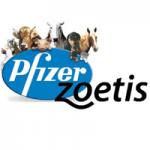Pfizer-Zoetis